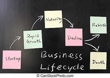 Business lifecycle concept on blackboard
