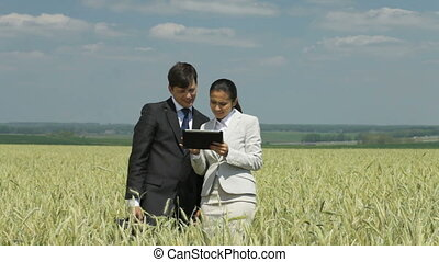 Cultivating business - Business team standing in the wheat...