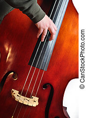 Upright Bass - Musician playing an upright bass with fingers