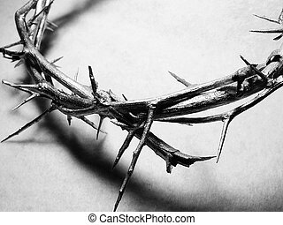 Crown of Thorns - A crown of thorns
