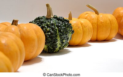 Pumpkins and Gourd - Several miniature pumpkins and a single...