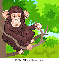 vector of funny monkey chimp in the jungle - brown...