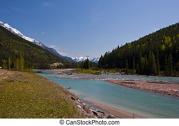 Rocky Mountain River - Glacier-fed green waters of a river...