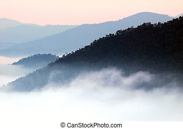Morning mist cover the mountain ,Thailand - morning mist...