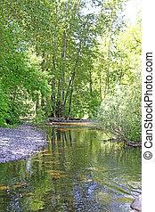 Multnomah River, OR - Multnomah River below the falls,...