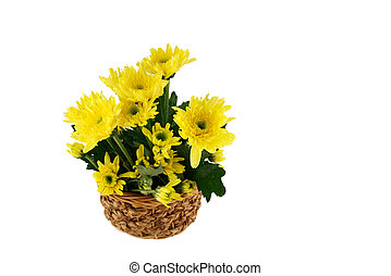 Yellow flower on the basket, Isolate on white background
