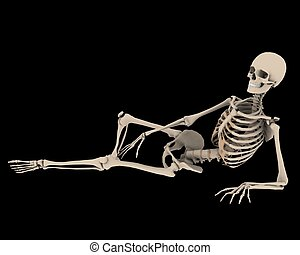 resting up - a skeleton in a pose