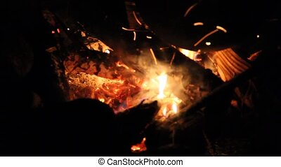 Night Bonfire Stir hot coals