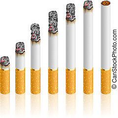 Set of Cigarettes During Different Stages of Burn