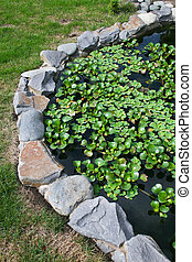 Natural stone pond with water plants