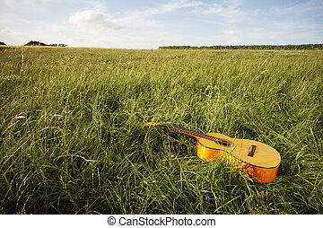 Wooden guitar lying in grassy field - Wooden acoustic guitar...
