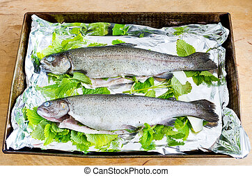 Trouts with melissa - Two trouts prepared for baking with...