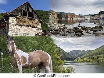 landscapes, flora and fauna of Ligu