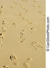 footprints in the sand - a lot of footprints in all...