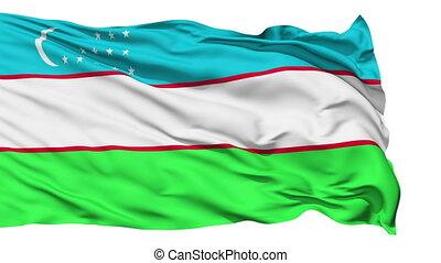 Waving national flag of Uzbekistan - Animation of the full...
