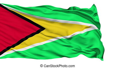 Waving national flag of Guyana - Animation of the full...