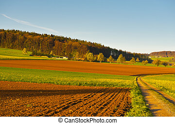 Plowed Fields - The Swiss Farmhouse Surrounded by Forests...