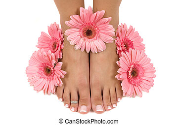 Spa - Pedicured feet and pink daisies