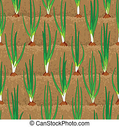 onion sprout vegetable patches in row seamless - onion...