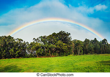 Rainbow over Beautiful Green Field and Blue Sky