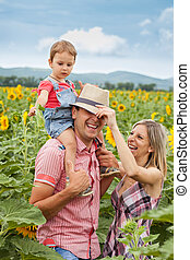 happy family - happy young family in sunflowers in a sunny...