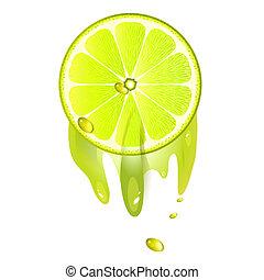 Juicy slice of lemon fruit