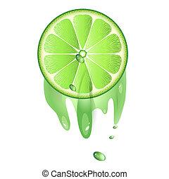 Juicy slice of lime fruit