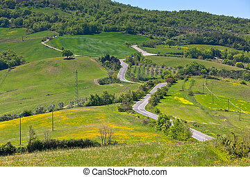 Tuscan view with local curve road