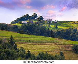 Colorful summer landscape in the vilage. Sunrise