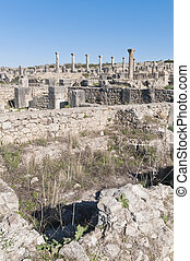 Venus Entourage house at Volubilis, Morocco - Venus...