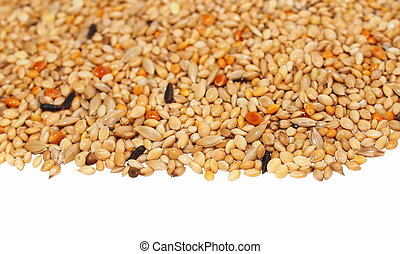 Pile of seed mixture isolated