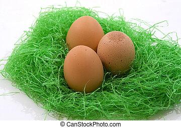 Osternest - Easter