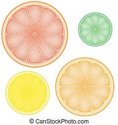 set of citrus