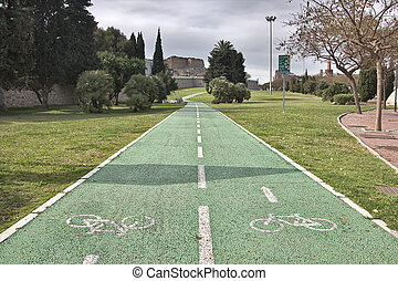two-way bike path in a park