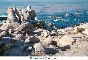 Pacific Ocean shoreline with rocks and shrubs.