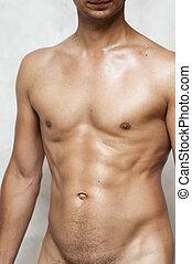 desnudo, mojado, muscular, hombre, Torso