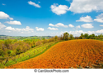 Plowed Fields - The Italian City Surrounded by Forests and...