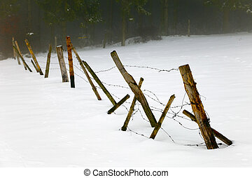A drat thorn fence in the snow storm, in fields by small...