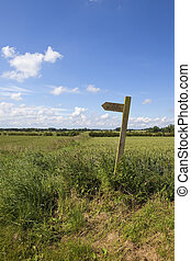 country footpath - english summer landscape with a wooden...