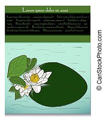 Card with water lily.