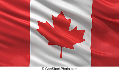 Flag of Canada waving in the wind with highly detailed...