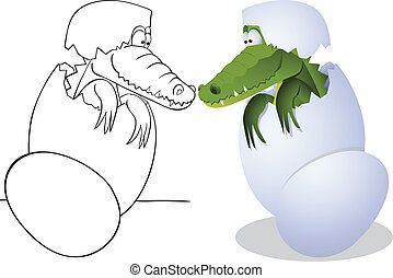 Crocodile and eggs - Crocodile hatched from eggs Outline and...