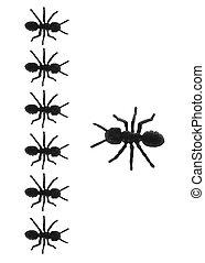 Toy Ants