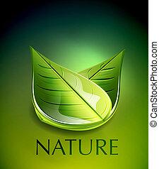 Nature green leaf concept