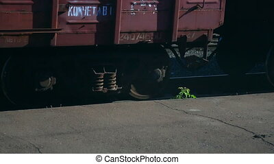 Railroad car wheels - Freight wagon rides through the...