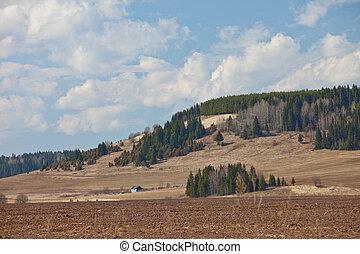 Spring agricultural landscape