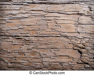Driftwood background