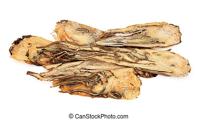 Angelica Root Herb