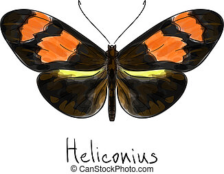 Butterfly Heliconius. Watercolor imitation.