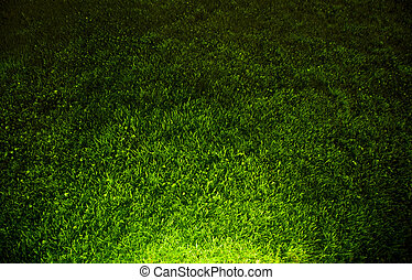 Dark contrasted green grass background. Top view and hard...